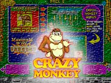 Азартный онлайн-слот Crazy Monkey